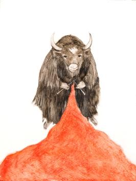 scriver_jessica_the_knitting_yak